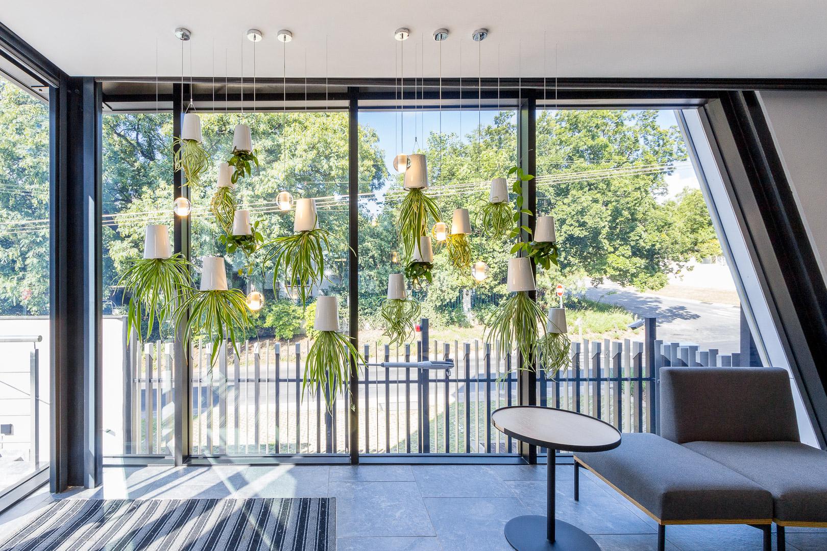 RHPX_Portfolio_Holt Street Parkmore Interior-5